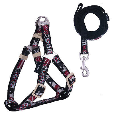 Totem Dog Harness and Leash Set Strong Nylon Rope Puppy Harnesses Adjustable