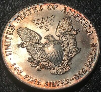 1990 TONED American Silver Eagle Dual Toning ASE 1 One Oz. Ounce .999 Dollar UNC