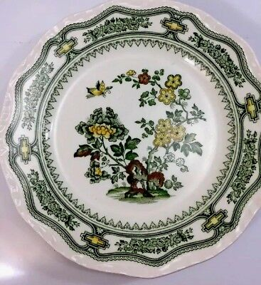 Mason's Ironstone Manchu Green Dinner Plate, Salad Plate or Soup made in England