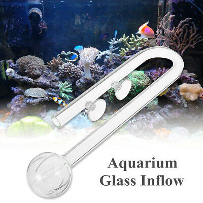 Fish Tank Aquarium Glass Outflow Inflow Poppy Pipe 13/17mm Tube + Suction Cup