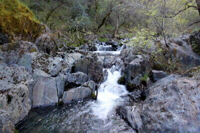 RARE Placer Gold Mining Claim Gentry Gulch Mariposa County, Ca Near Coulterville