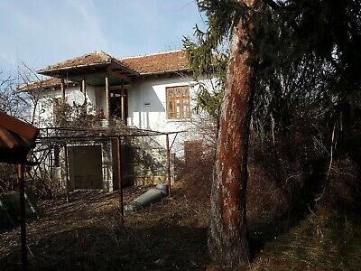 Property situated in the village of Delyanovtsi
