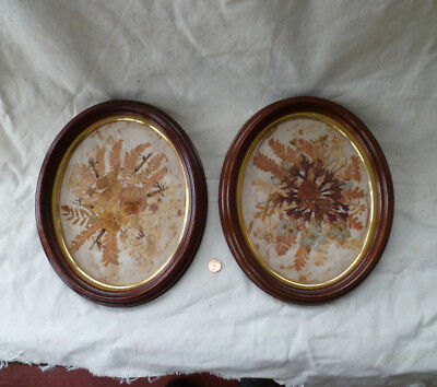 "~ antique PAIR of Victorian Oval FRAMES w/Dried Flowers - 9 1/2"" x 11 1/2"""