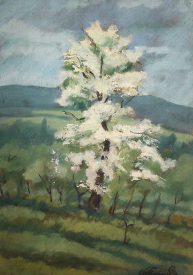 Vintage Impressionist oil painting landscape tree signed