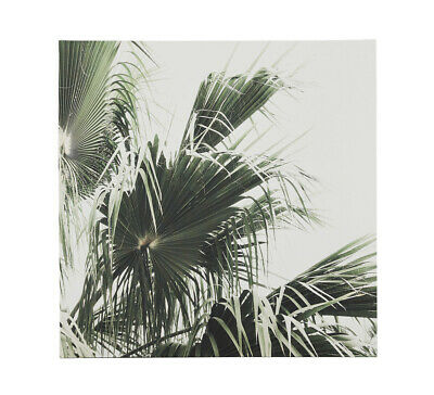 NEW Palm Leaves Wall Art Green By Fantastic Furniture