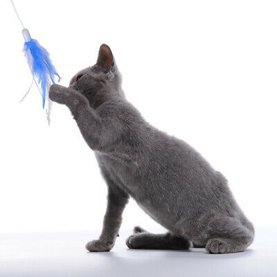 Feather Teaser Rotating Interactive Entertainment Cat Toys Funny Electric Pet