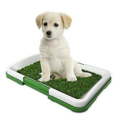 Puppy Pet Potty Trainer Indoor Fake Grass Dog Training Patch Restroom 18.5 X 13