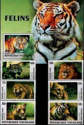 Topical Stamps Lovely Tigers Souvenir Sheet Cto Russian Amur Tiger