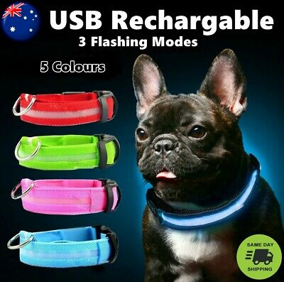 Rechargeable LED Pet Collar Dog Pets Safety Flashing Light Leash Glow In Dark