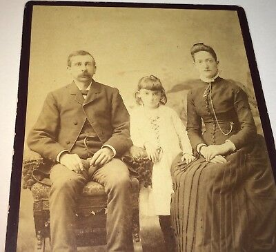 Antique Victorian American Family! Adorable Girl! Harrisburg, PA Cabinet Photo!