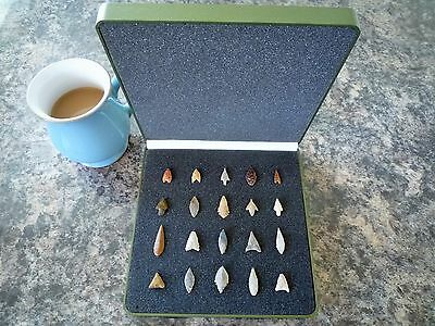 20 x Quality Miniature Neolithic Arrowheads in Display Case - 4000BC - (P013)
