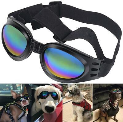 doggy waterproof sunglass and goggles