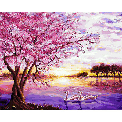 Sunset Snow River/Swans Lake Hand Painted By Numbers DIY Oil Painting Art Crafts