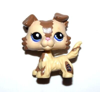 Littlest Pet Shop 2210 Brown Cream Collie Puppy Dog Blue Eye LPS USA Seller NEW
