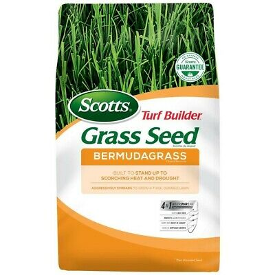 Scotts Turf Builder Bermuda Grass Seed  1 Lbs Coverage 1000 sq ft 4 in 1