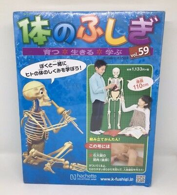 Hachette Collections Japan Mystery of the Body Version59 Collectible Educational