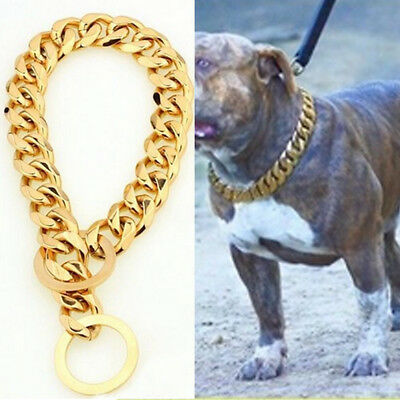 Stainless Steel Chain Dog Collar Big Gold Plated Curb Training Walking Slip Link