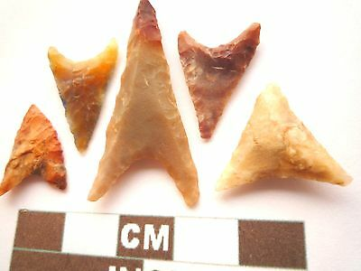 Neolithic Arrowheads, 5 x Triangle Style Artifacts - 4000BC - (Z053)