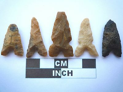 Neolithic Arrowheads x 5, Eiffel / Moroccan Points, Genuine - 4000BC  (T050)