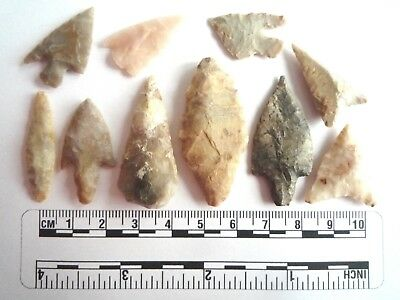 Neolithic Arrowheads x 10, High Quality Selection of Styles - 4000BC - (2451)