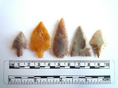 Neolithic Arrowheads x 5, High Quality Selection of Styles - 4000BC - (2404)