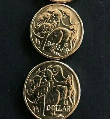 """2019 """"U"""", one dollar coin, UNC and ready to collect!"""