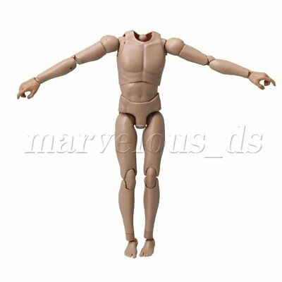 Light Brown 1/6 Scale Male Muscle Body Model Collectable Action Figure Toy