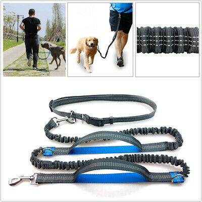 1PCS Reflective Elastic Hands Free Running Belt Jogging Waist Pet Dog Leash Lead