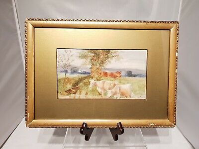 Lovely Framed Watercolour Signed G. Tod. 11 1911 Cow's with River and Field