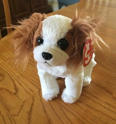 Ty Beanie Baby ~ REGAL the King Charles Spaniel Dog (6 Inch)