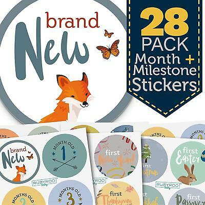 Monthly Baby Stickers - 28 First Year Milestone Sticker Pack For Boy (WLND)