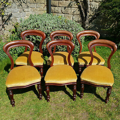 Victorian Balloon Back Mahogany Set of 6 Dining Chairs Late C19th (Antique)