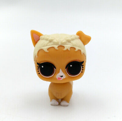 Lol Surprise Biggie Pets Eye Spy Rare Doll Bp 010 Series 4 Djkt