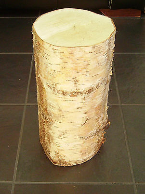 "Silver Birch Bark wood Log Decorative Log centerpiece section.16"" tall. 6-7"" dia"