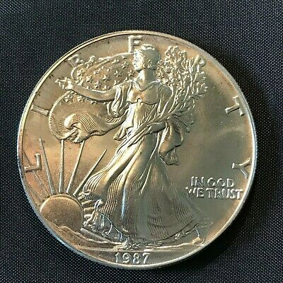 1987  Silver Walking Liberty American Eagle One Dollar Coin .999 Fine 1 Troy Oz