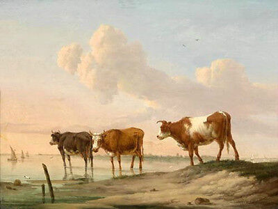 Wonderful huge work oil painting animals three cows cattles drinking by river