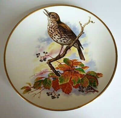 Large Fenton Bone China Display Plate featuring a Song Thrush - 10 3/4 inch
