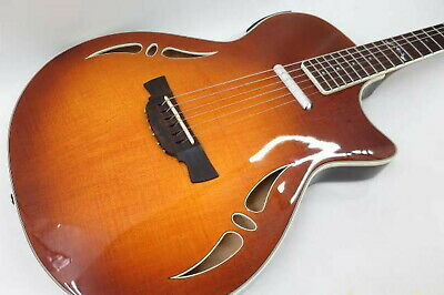 457 crafter Crafter With Wf-rose Electric Acoustic Guitar Soft Case