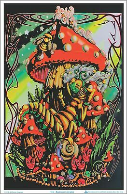 Mushroom/Caterpillar Blacklight Poster 23 x 35