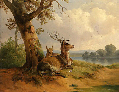 Oil painting nice wild animals loving couple deer in sunset landscape handpaint
