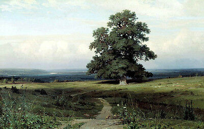 Oil painting Shishkin Ivan Ivanovich Russia - Among the flat valley Hand painted