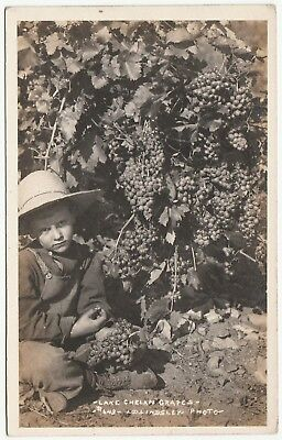 RARE Real Photo  Child Grapes Lake Chelan WA Washington RPPC by LD Lindsley 1912