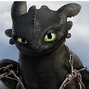 """5D DIY Diamond embroidery Painting Kits -Full Square """"How to train your dragon"""""""