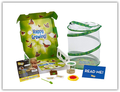 Insect Lore Deluxe Butterfly Garden with Live Cup of Caterpillars & Feeding Habi