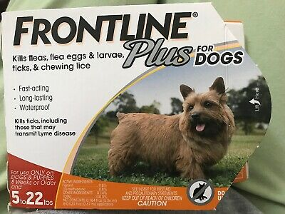 Frontline Plus Flea & Tick Control for Small Dogs 5-22 lbs, 7 Doses In Box !