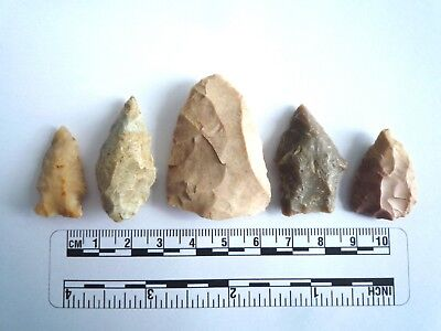 5 x Native American Arrowheads found in Texas, dating from approx 1000BC  (2215)