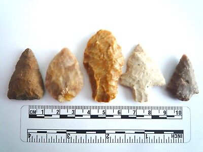 5 x Native American Arrowheads found in Texas, dating from approx 1000BC  (2213)