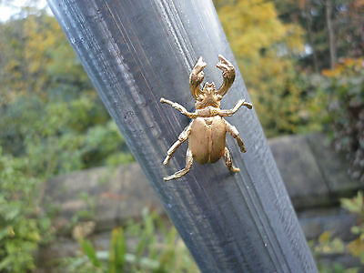 insect animal Beautiful solid brass beetle finely modelled and life sized