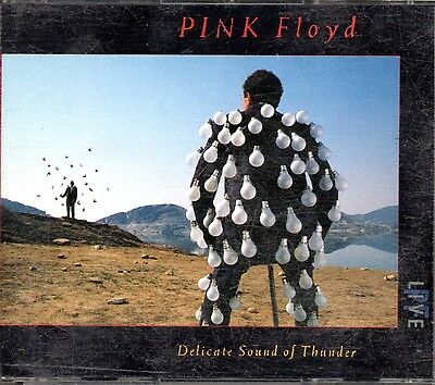 Delicate Sound Of Thunder - Pink Floyd (Cd)