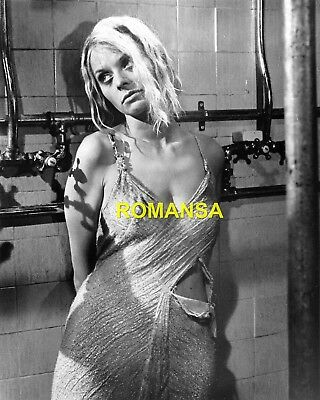 Susannah York 10 X 8 Photograph + Free 6 X 4 Pocket Book Size Photograph  R4181